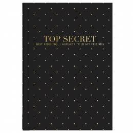 Mary Square Top Secret Journal