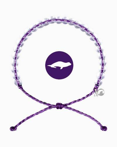 The 4Ocean Bracelet for Hawaiian Monk Seal Conservation