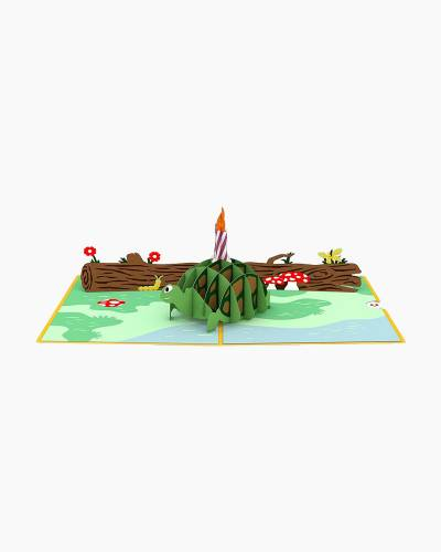 Celebration Turtle 3D Pop Up Card