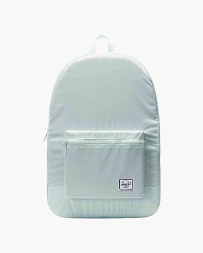Packable Daypack in Glacier